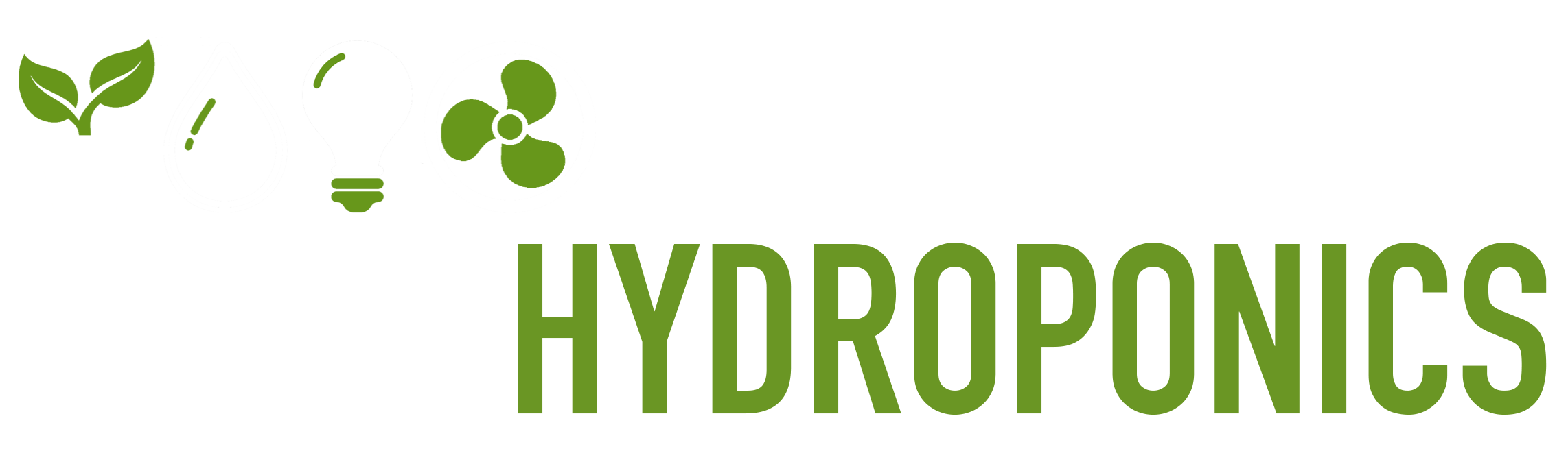 Leeds Hydroponics, Leading The Way